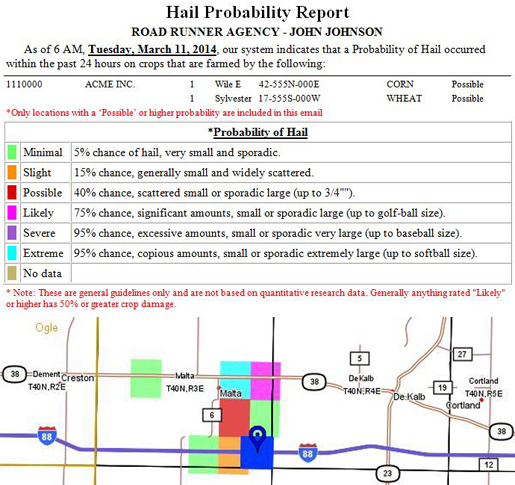 Hail Report Example